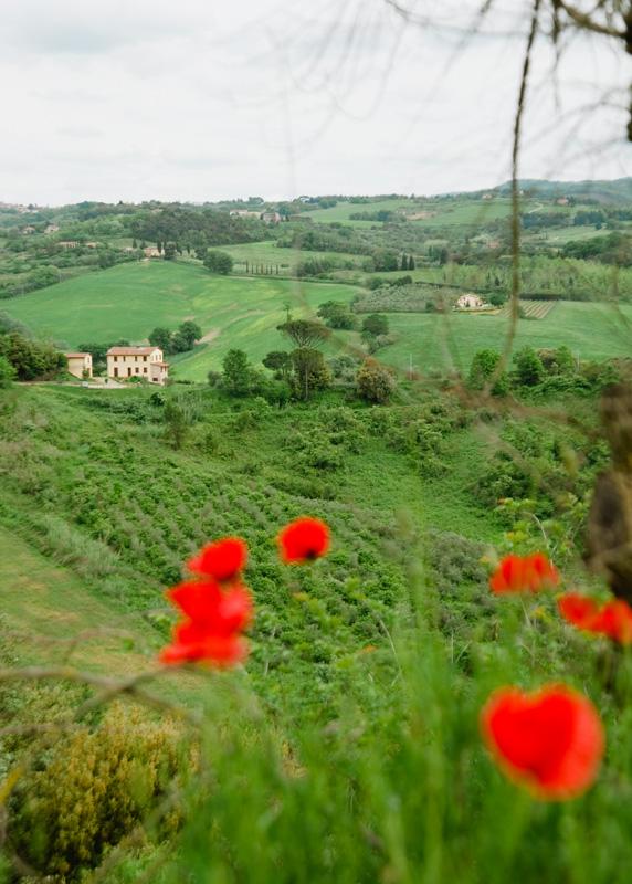 Tuscany in Spring2