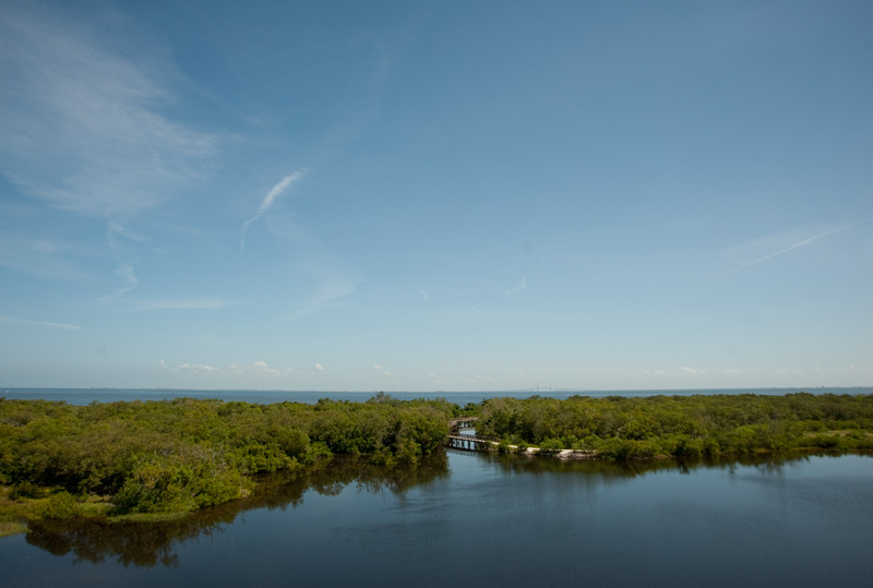 Robinson Preserve View