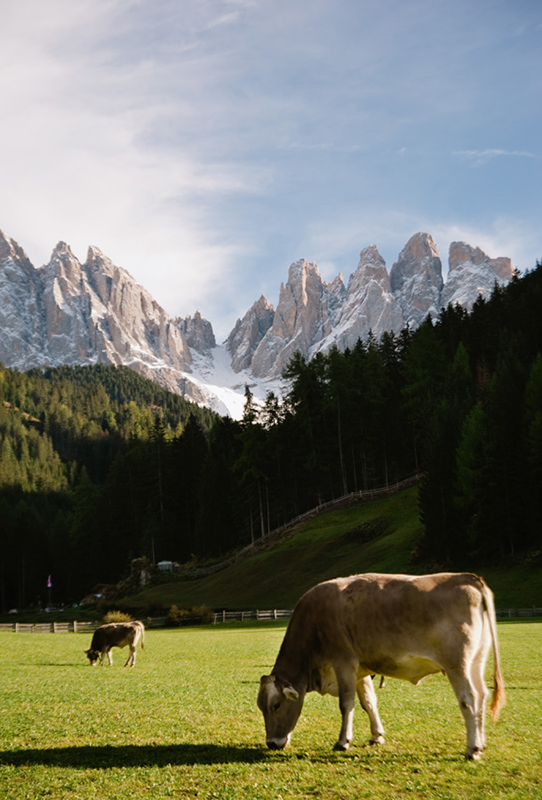 Dolomites-in-October